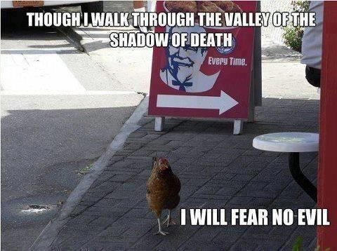 Though I walk through the valley of the shadow of death, I will fear no evil :)